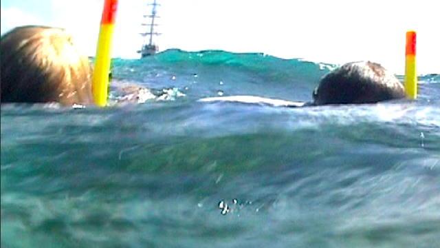 Vorschaubild zu Segeln in der Karibik – Revierreportage